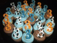 Cupcakes for a Woody fan